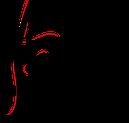 Brunejupiter